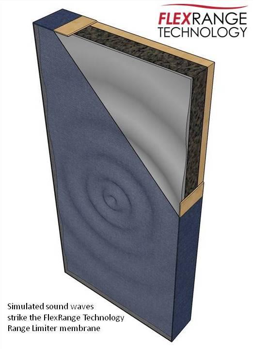 Simulazione di un'onda sonora che colpisce la membrana con TFR.