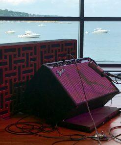 Bradley Royds Compressor GIK Acoustics Impression Pro Series